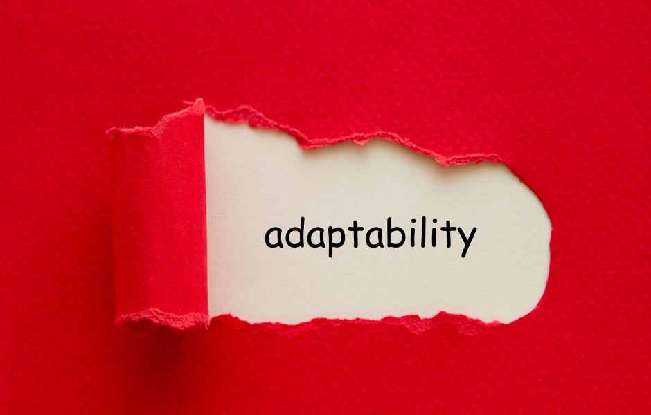 Business Adaptability - Tejon